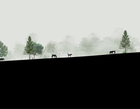 Anders Farm